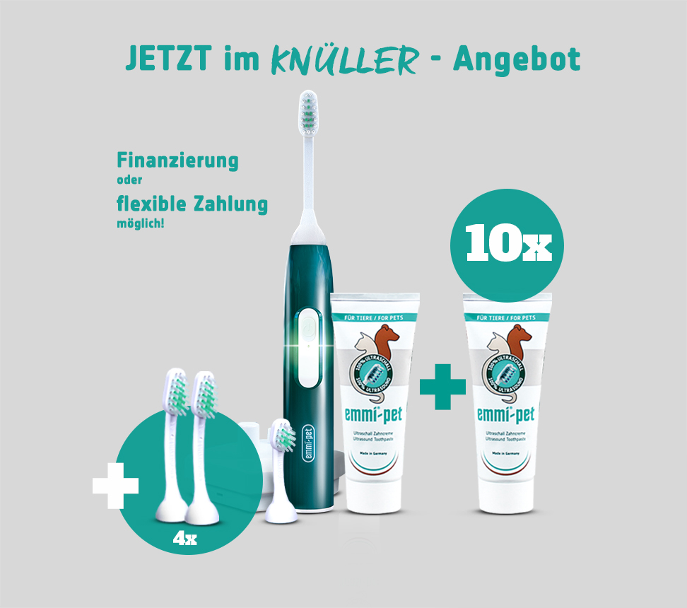 knullerpaket gross dental specialist