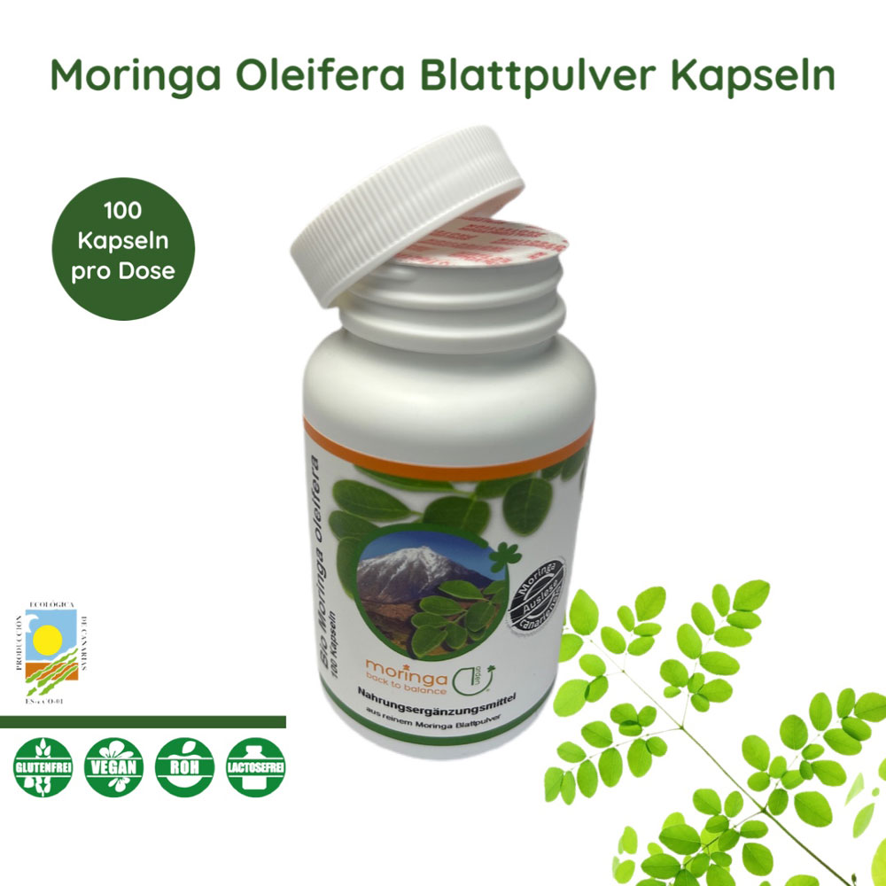 moringa oleifera moringa garden open